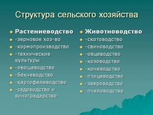 Структура растениеводства и животноводства в России