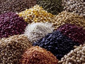 Зерновые и зернобобовые культуры