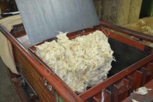 Первичная обработка овечьей шерсти