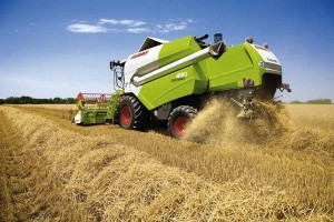 Рентабельный сбор урожая в растениеводстве