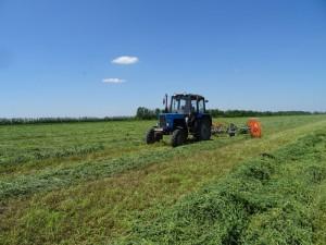 Технологическая эффективность растениеводства