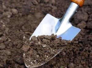 Подготовка земли осенью
