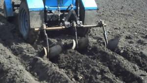 Рыхление почвы для посадки картофеля