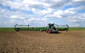 Комбайнирование пшеницы