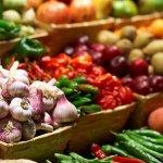 Анализ продукции растениеводства: основные факторы и показатели качества