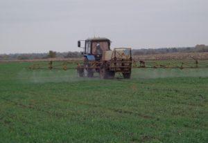 Ризоплан в сельхозпроизводителей