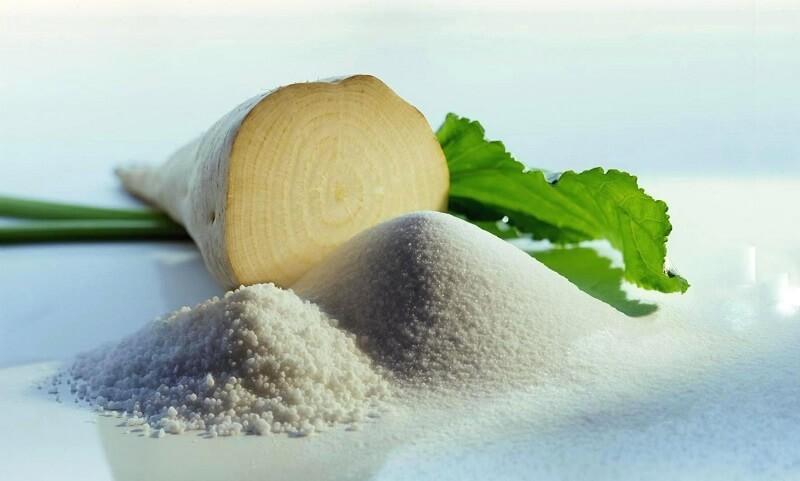 Технологии выращивания сахарной свеклы