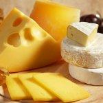 Пять сырных заводов появятся в Ленинградской области