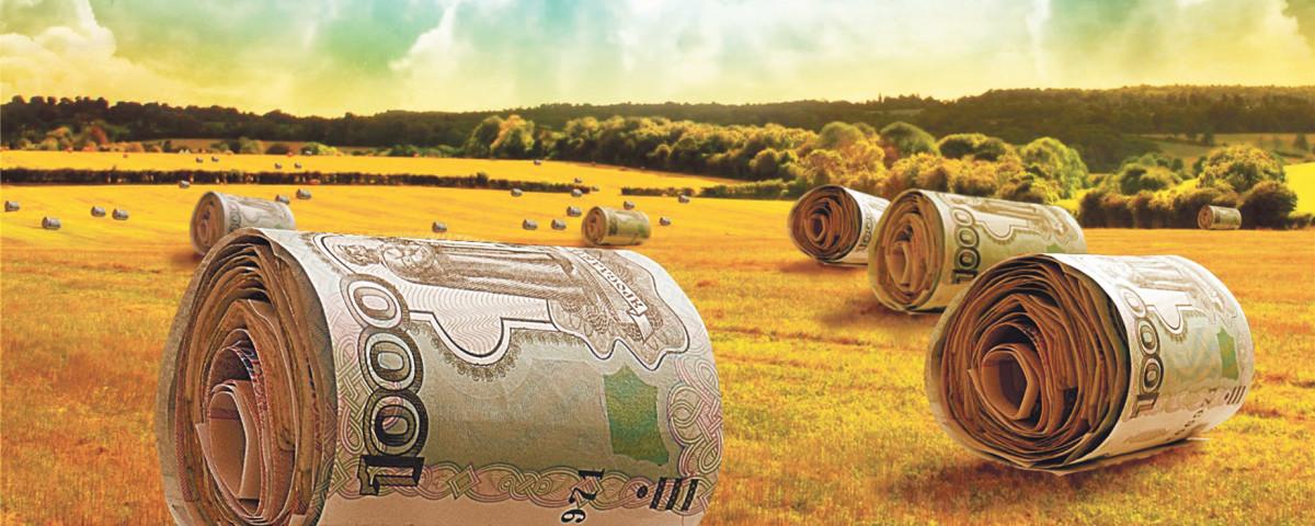Гранты на развитие сельского хозяйства