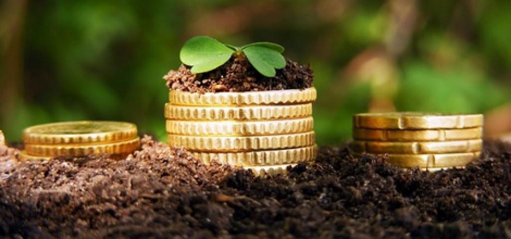 Инвестиции в сельское хозяйство будут дотироваться государством