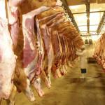 В Южной Осетии появится мясоперерабатывающий комплекс Растдон