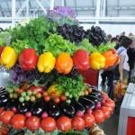 Агропромышленная выставка 2015 года в Самаре