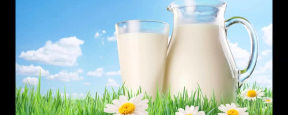 Курские производители молока снова уличены в мошенничестве