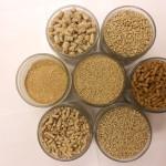Уникальная кормовая добавка для животных может производиться на Сахалине