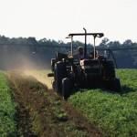 В Иркутской области создается собственный агротехнический парк