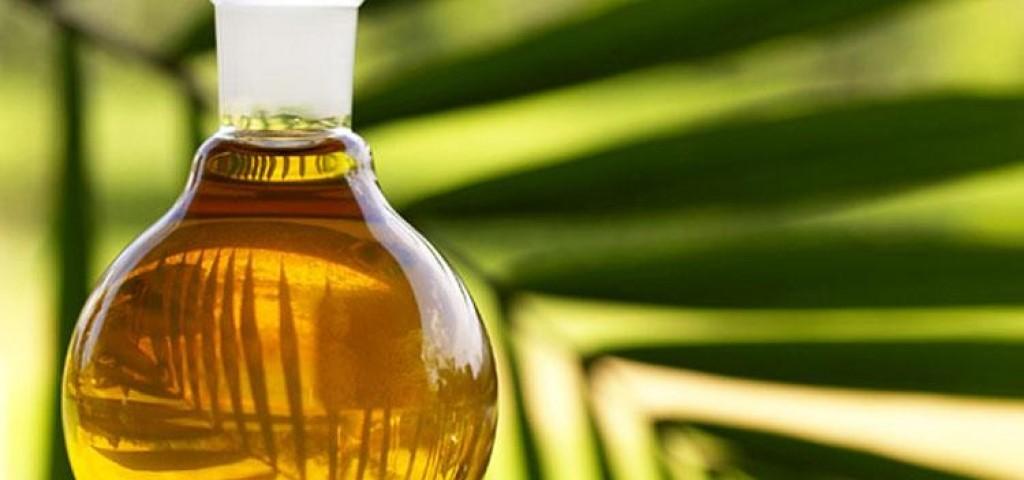 завод пальмового масла