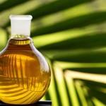 Краснодарский завод пальмового масла под вопросом закрытия