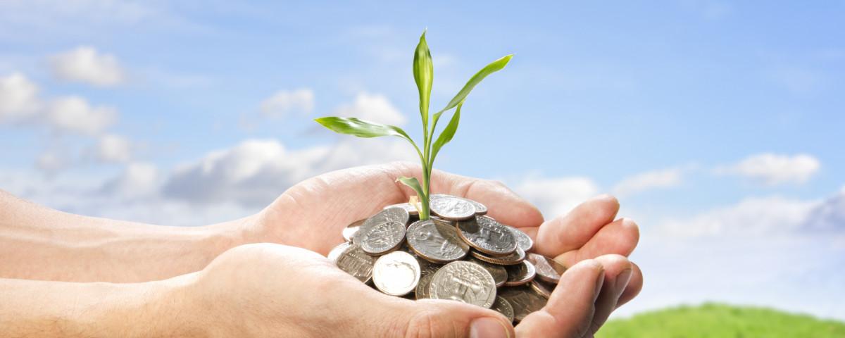 Помощь сельскому хозяйству: на что рассчитывать