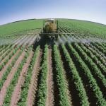 Дальний Восток расширяет аграрный сектор