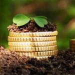 Двойное субсидирование для аграрного сектора остается в силе