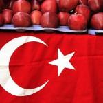 Турецкие овощи постепенно исчезнут из продажи