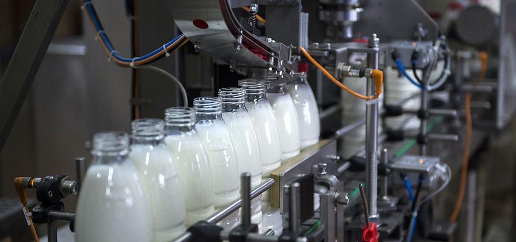 В Амурской области решили повысить производство молока