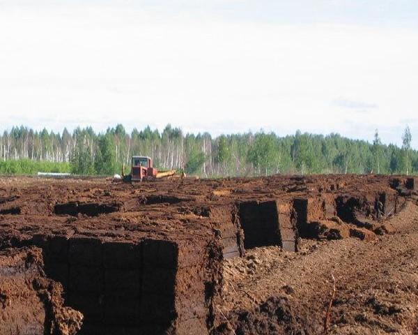 Томский научно исследовательский институт сельского хозяйства и торфа вошел в число членов Международного торфяног