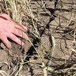 Забайкальскому округу требуется помощь государства