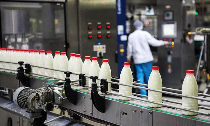 России не хватает восьми миллионов тонн молока