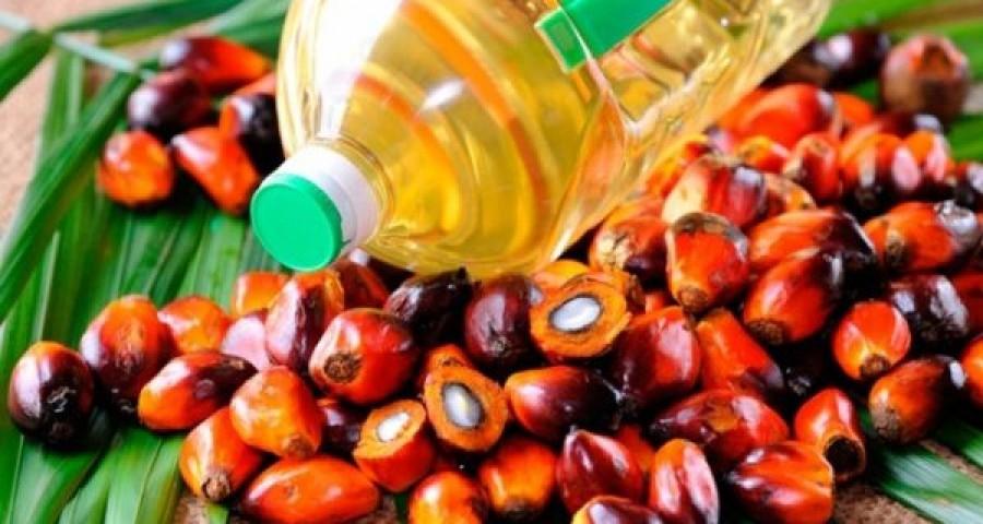 Пальмовое масло и дальше будет использоваться в России