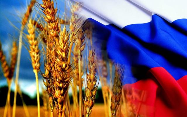 Россия возвращается в список крупнейших мировых экспортёров зерна