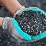 Удобряй щедрей поля — наградит тебя земля?