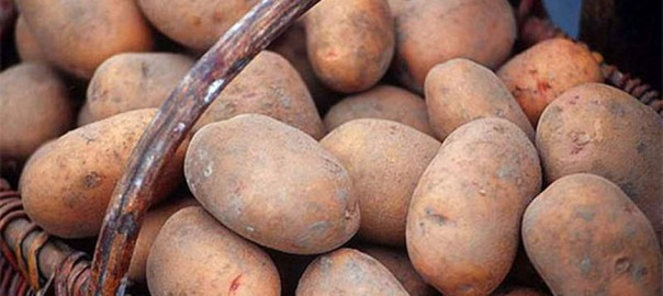 Почему картошка на Кубани в семь раз дороже, чем в средней России