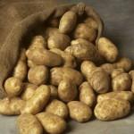В Омской области картофель будет подвергаться глубокой переработке