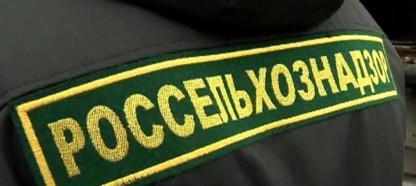 В Самарской области сотрудники Росельхознадзора, ветеринарного управления и природоохранной прокуратуры провели ряд проверок,