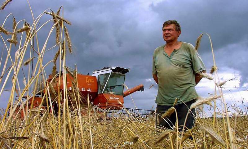 Власти Иркутской области оказывают финансовую поддержку сельхозпроизводителям