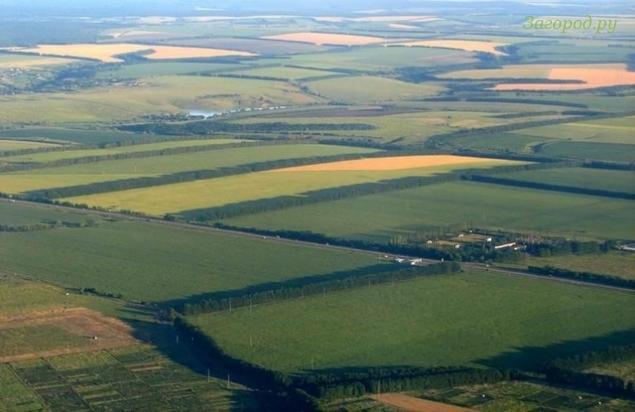 Государство намерено возвратить в оборот земли сельскохозяйственного назначения