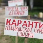 В Крыму на акцию протеста вышли фермеры – производители свинины