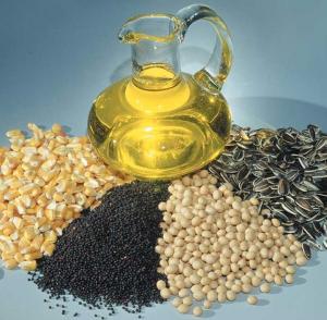 Виды и семейства масличных культур