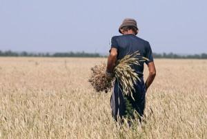 Владимирские фермеры рассказали о своих проблемах