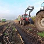 Государственные программы на развитие сельского хозяйства: современные реалии