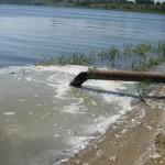 ЗАО «Скородянское» получило предписание от Росприроднадзора ликвидировать навозные реки