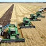 Особенности отечественного растениеводства с точки зрения управленческих процессов