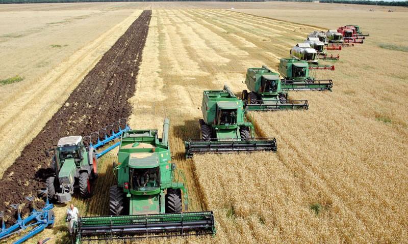 Сбор урожая на полях