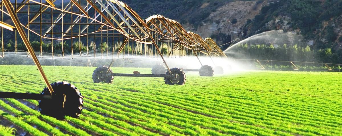 производительность труда в сельском хозяйстве