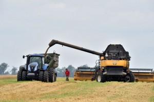Предприятиям нужны кредиты во время сбора урожая