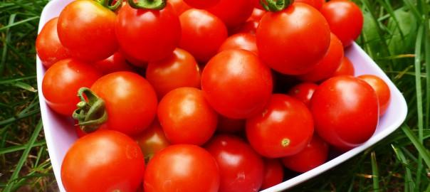Почему хабаровчане отдают свое предпочтение японским томатам