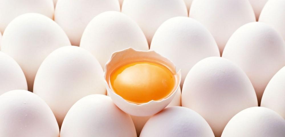 Японские курочки несут гипоаллергенные яйца
