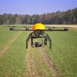 Технологии производства и хранения продукции растениеводства