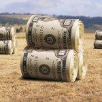 Дотации фермерам, как перспектива развития сельскохозяйственного бизнеса